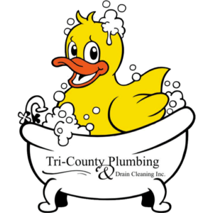 Tricounty plumbing and drain favicon ducky